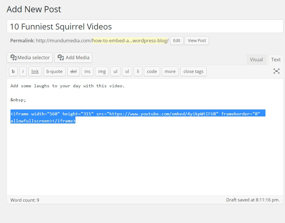YouTube Video to WordPress Blog